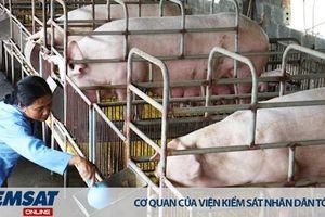 07 hành vi bị cấm trong chăn nuôi