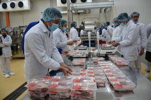 Khánh thành tổ hợp chế biến thịt hàng đầu thế giới tại tỉnh Hà Nam