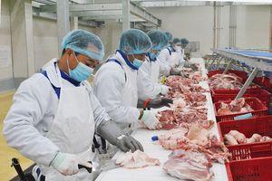Khánh thành tổ hợp chế biến thịt mát hơn 1.000 tỷ đồng tại Hà Nam