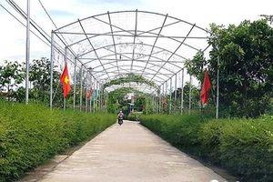 Hà Tĩnh: Nỗ lực từ xã nghèo xây dựng Nông thôn mới