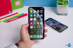 Hàng loạt iPhone dính kết nối dữ liệu di động sau khi nâng cấp lên iOS 12.1.2