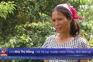 Thiếu nước sinh hoạt ở Tà Lại, Sơn La