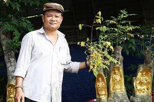 Độc đáo những bức tượng vàng 'ẩn mình' trên thân cây sống