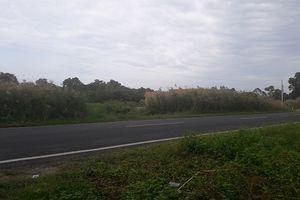 'Loạn' tranh chấp đất tại huyện Thới Bình, Cà Mau