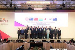 Ấn Độ chuẩn bị đàm phán song phương với một số thành viên RCEP