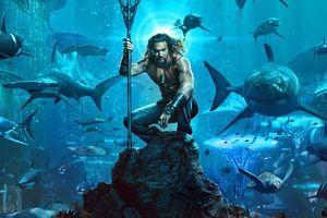 'Aquaman' cán mốc 500 triệu USD toàn cầu
