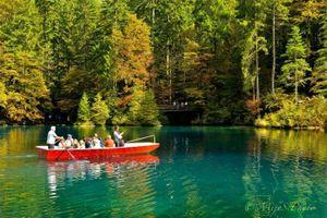 Chiêm ngưỡng vẻ đẹp huyền diệu của hồ Blausee, Thụy Sỹ