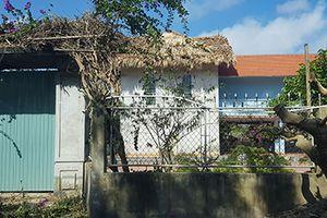 Thái Bình: Biệt thự nhà vườn nằm giữa rừng ngập mặn ngoài đê biển