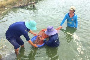 Doanh nghiệp thủy sản biến phế phẩm thành 'mỏ vàng'