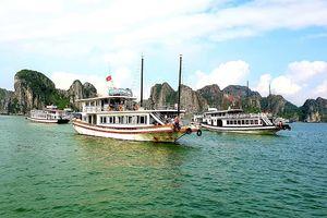 Quảng Ninh đình chỉ tàu du lịch Hải An