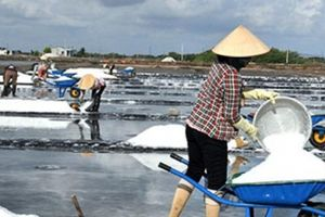 Nỗ lực giữ nghề muối Long Điền có từ thời khai phá đất phương Nam