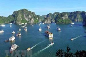 Đình chỉ hoạt động của tàu du lịch Hải An trên vịnh Hạ Long