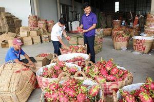 Từ 1/1/2019, nông sản xuất khẩu sang Hàn Quốc cần lưu ý gì?