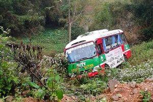 Cây xoan 'cứu' 16 người trên xe buýt