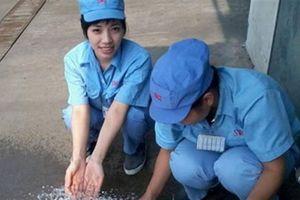 Người Việt hay nghỉ Tết dài ngày: Nhiều người tự nhiên giàu...