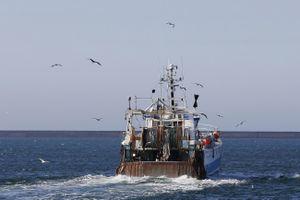 Nhập cư vào Anh qua đường biển tăng đột biến