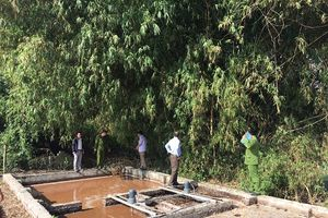 Phù Yên – Sơn La: Xử lý nghiêm 7 cơ sở dong giềng gây ô nhiễm môi trường