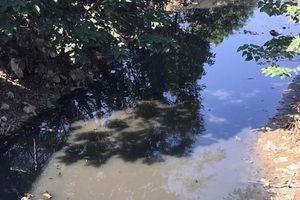 Sản xuất, chế biến nông sản thực phẩm: Nỗi lo về an toàn và ô nhiễm
