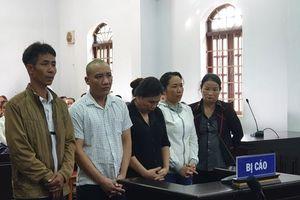 Nhuộm than pin vào hồ tiêu: 5 bị cáo nhận hơn 36 năm tù