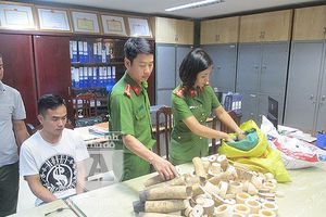 Truy tố 'nhà' chế tác, kinh doanh sản phẩm từ ngà voi