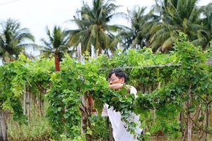 Mưa lũ gây thiệt hại nặng nề tại Khánh Hòa và Ninh Thuận