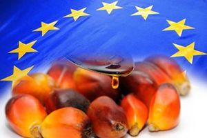 Chính sách dầu cọ của EU đang gây ra phản ứng của thế giới