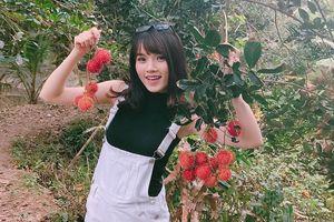 Tỉnh nào được mệnh danh vương quốc trái cây của Việt Nam?