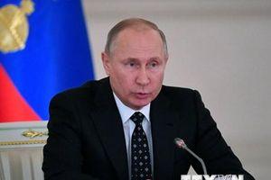 Tổng thống Nga gửi lời chúc mừng Năm Mới tới lãnh đạo các nước