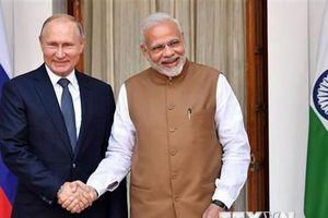 Tổng thống Putin tin tưởng vào triển vọng phát triển quan hệ Nga-Ấn