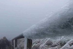 'Thiên đường cỏ lau' Lạng Sơn 'khoác' băng tuyết đón năm mới