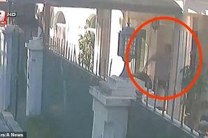 Hình ảnh vận chuyển vali nghi chứa thi thể nhà báo Khashoggi