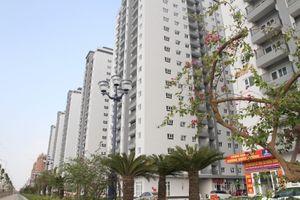 Cận cảnh chung cư giá rẻ nhất Hà Nội vừa bàn giao nhà