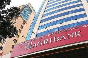 Agribank thu giữ tài sản đảm bảo khoản vay của Tân Thịnh Phát