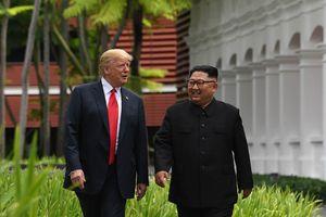 Tổng thống Trump mong gặp lại Chủ tịch Kim trong 'tương lai không xa'