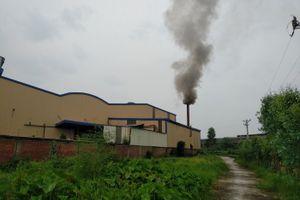 Tứ Kỳ (Hải Dương): Công ty Hoàng Gia Việt ngang nhiên 'đầu độc' môi trường?
