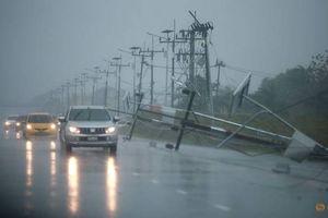 Thông tin mới về thiệt hại của cơn bão đầu tiên năm 2019