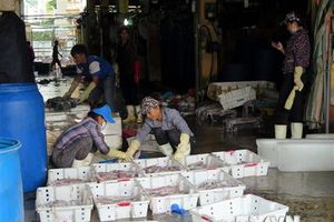 Khởi tố bị can, bắt Hưng 'kính' trong vụ bảo kê chợ Long Biên