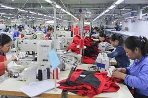 Quảng Trị có 362 doanh nghiệp đăng ký thành lập mới trong năm 2018