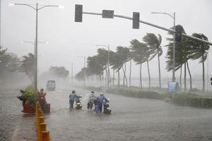 9 cơn bão gây thiệt hại gần nửa tỷ USD trong năm 2018