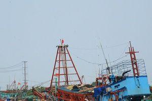 Cà Mau cho phép tàu cá hoạt động trở lại sau bão số 1