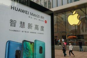 Huawei phạt nhân viên vì dùng iPhone đăng Twitter công ty