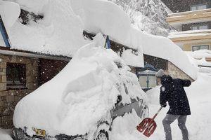 Nhiều người thương vong, mất tích do tuyết rơi dày đặc tại châu Âu