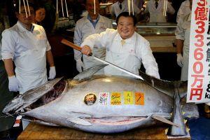 Người đàn ông bỏ hơn 70 tỉ mua con cá ngừ vây xanh