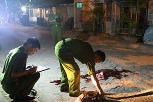 Long An: Hai vụ án mạng nghiêm trọng khiến 2 người tử vong