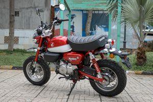 Loạt xe côn tay dưới 175 cc đáng chú ý đang bán ở VN