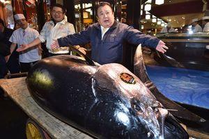 Vì sao chủ cửa hàng sushi bỏ 3,1 triệu USD mua một con cá ngừ?