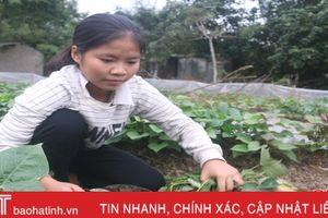 Vượt qua nghịch cảnh, cô học trò giành nhiều thành tích cao trong học tập