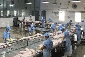 Kiểm tra các chuỗi sản xuất thịt lợn Việt Nam