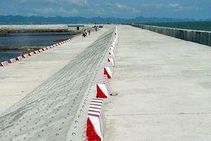 Hải Phòng đẩy nhanh tiến độ nâng cấp các tuyến đê xung yếu