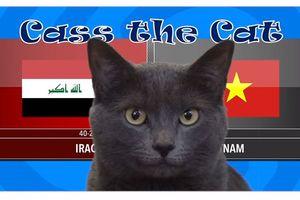 Asian Cup 2019: 'Mèo tiên tri' dự đoán Việt Nam đánh bại Iraq